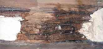 E-Wood Log Home Restoration